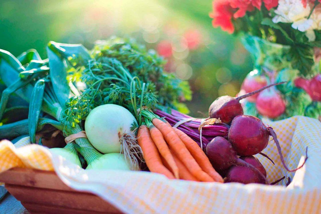 Manipulación de alimentos, seguridad alimentaria